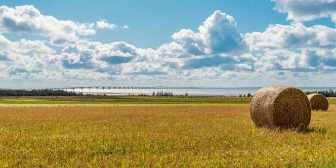 Hay bales on a farm along the ocean with the Confederation Bridge in the background (Prince Edward Island, Canada)