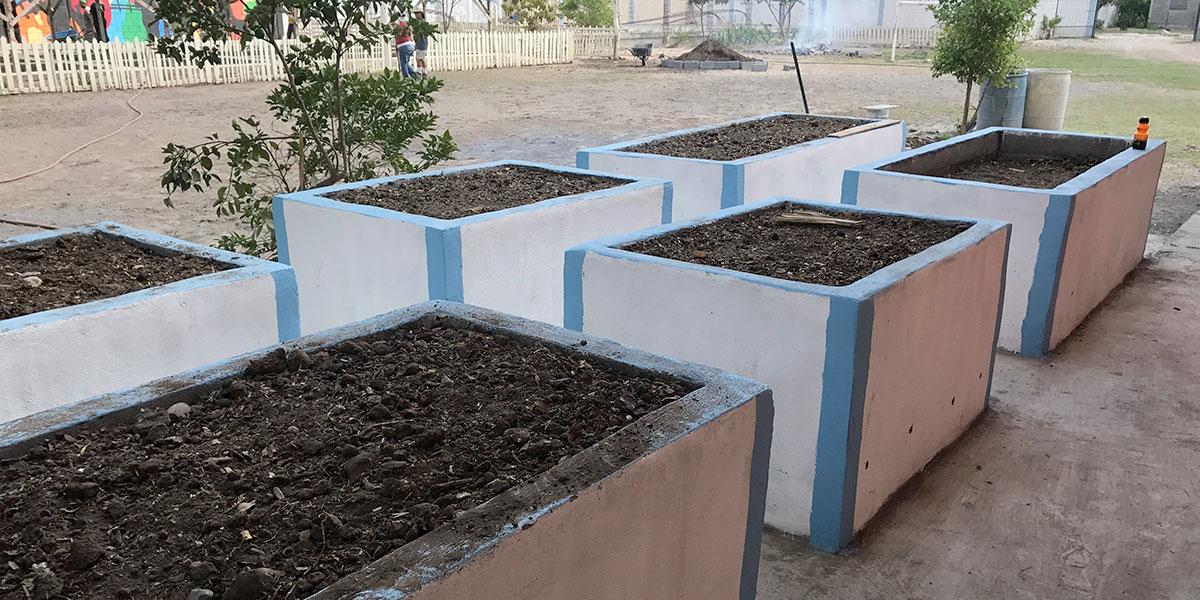 New raised box gardens in the garden in Naranjito