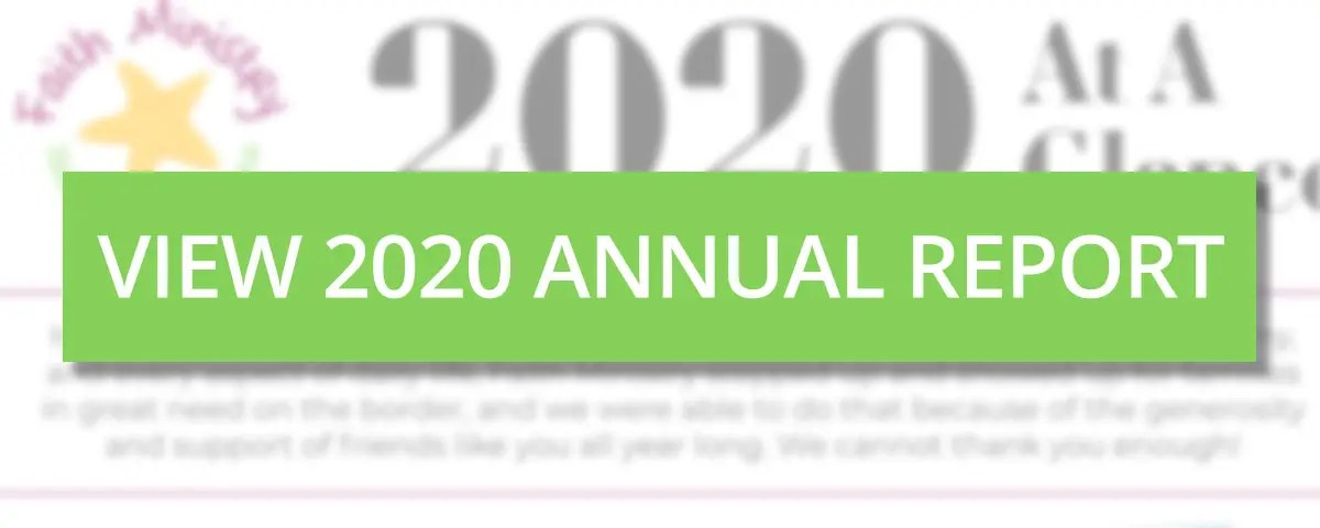View 2020 Annual Report