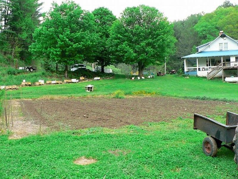 fresh spring field 2011