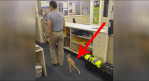 Adorable Baby Kangaroo Adopts Cop And Follows Him Everywhere