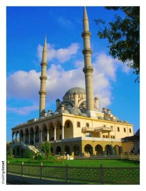 Mosque (13)
