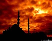 Mosque (8)