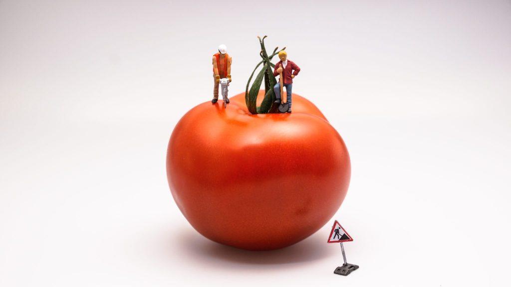 Zagramy w pomidora? Technika Pomodoro Twoim kluczem do sukcesu w szkole i pracy