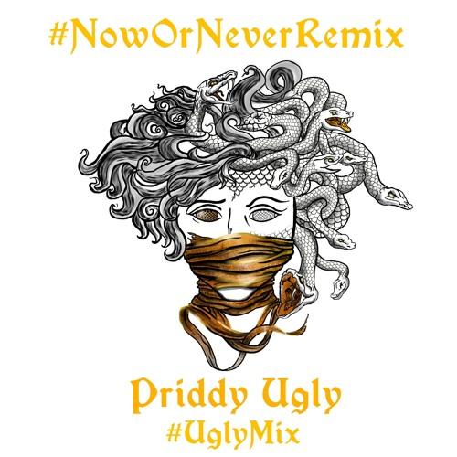 Priddy-Ugly-Now-or-Never-UglyMix-Artwork