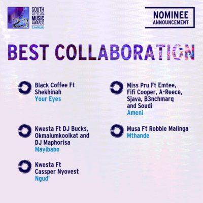 South African Music Awards 2016 - Full Nominee List #SAMA23 3