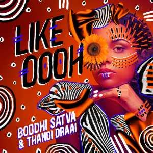 DOWNLOAD MP3: Boddhi Satva & Thandi Draai – Like Oooh