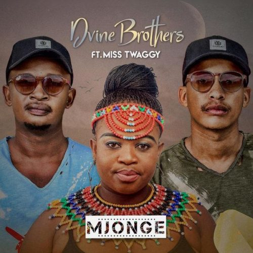 Dvine Brothers & Miss Twaggy – Mjonge