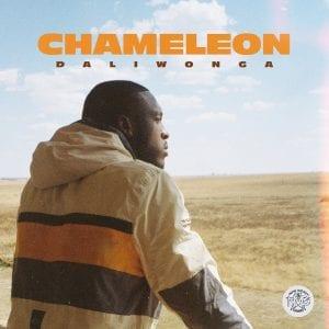 Daliwonga-Chameleon-zip-album-download