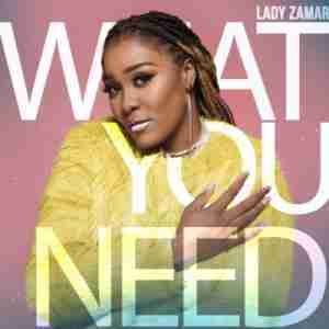 DOWNLOAD MP3: Lady Zamar What You Need Mp3 Download