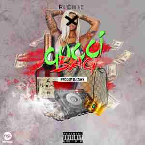 DOWNLOAD mp3: Richie Gucci Bag mp3 download