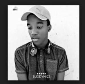 DOWNLOAD mp3:Buddynice Sound of Melodies (Redemial Mix) mp3 download