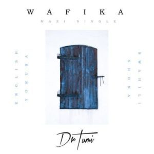 DOWNLOAD mp3: Dr Tumi Wafika English Version mp3 Download