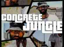 DOWNLOAD mp3: iLLRow Concrete Jungle mp3 download