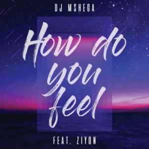 DOWNLOAD mp3:DJ Mshega How Do You Feel feat. Ziyon mp3 free download
