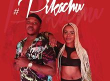 Download mp3: Kaygee Daking & Bizizi Pikachu fakaza 2019 2020 com music gqom amapiano afrohouse mp3 download