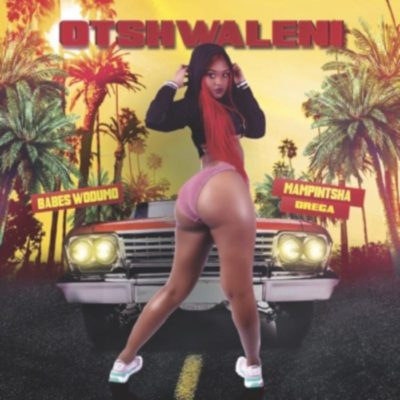 Video: Babes Wodumo – Otshwaleni Ft. Mampintsha & Drega Mp3 Download