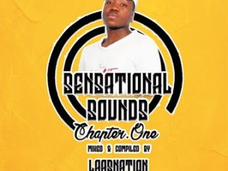 Music Fellas Presents; LaasNation – Sensational Sounds Chapter One Mp3 Download