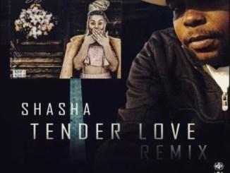 Sha Sha – Tender Love (King Matalic SA Remix) Mp3 Download