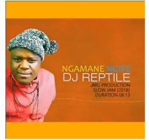 Download Mp3 Dj Reptile – Ngamane Ngife (Slow jam Prod by JMC)