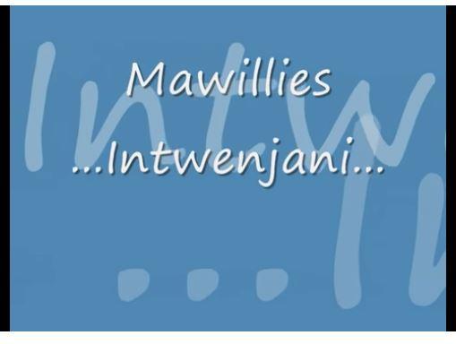 Mawillies - Intwenjani