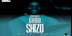 Download Mp3 ShizO – Amapiano 2020 Guest Mix GoMonateGaboShizo Vol.5