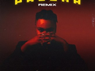 DJ Tunez – Paloma (Remix) (Amapiano) Ft. D3AN & Alpha P