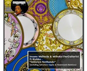 Insane Malwela, MthokoTheGuitarist & Rishka – Intliziyo Nothando
