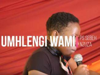 Sebeh Nzuza - Akubiyele Umhlengi Wami
