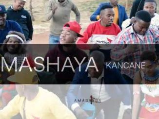 Amashaya Kancane - Ingezo Emabhinceni Mp3 Download