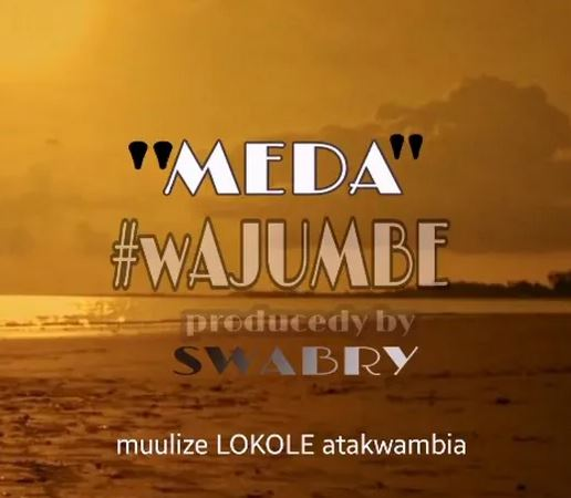 Meda - Wajumbe Mp3 Download