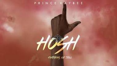 Prince Kaybee Hosh Video