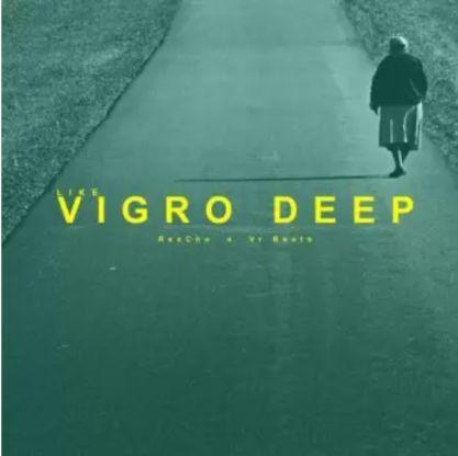 ReeCho – Like Vigro Deep Ft. VR Beats