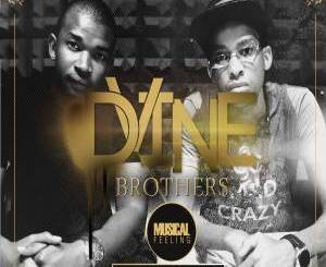 ALBUM: Dvine Brothers – Musical Feeling
