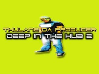ALBUM: Thulane Da Producer – Deep In The Hub 2