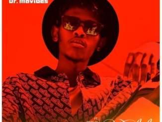 VIDEO: Dr MaVibes – Umlilo Ft. Blaq Diamond, Manny Yack, Snymaan & Brvdley