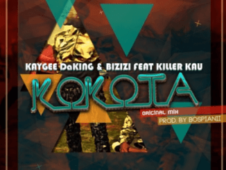 Kaygee, Bizizi, Kokota, Piano, (Dj TeeSoul Revisit),mp3, download, datafilehost, fakaza, DJ Mixa