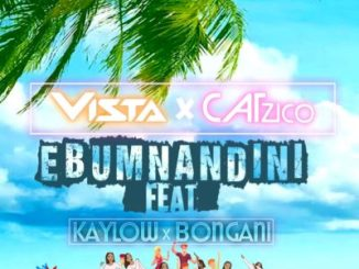 Vista, Catzico, Ebumnandini, Kaylow, Bongani, mp3, download, datafilehost, fakaza, DJ Mix