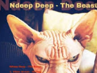 Ndeep, Deep, Tribute To, Duke, Soul, mp3, download, datafilehost, fakaza, DJ Mix