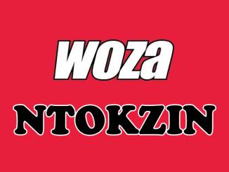 Ntokzin, Woza, mp3, download, datafilehost, fakaza, DJ Mix