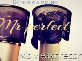 Mr Perfect, Swenka Fela, DJ La bengwa, mp3, download, datafilehost, fakaza, DJ Mix