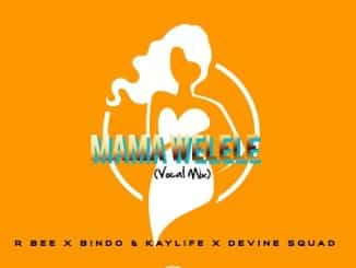 R-bee, Bindo, KayLife, Devine SquaD, Mama Yelele (Vocal Mix), mp3, download, datafilehost, fakaza, DJ Mix