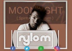 Nylo M, Moonlight (Spiritual Afro Drum), mp3, download, datafilehost, fakaza, DJ Mix