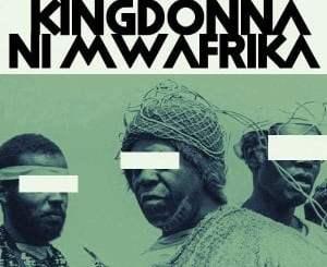 KingDonna, Ni Mwafrika, mp3, download, datafilehost, toxicwap, fakaza