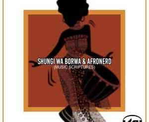 Shungi Wa Borwa, AfroNerd, Music Scriptures, mp3, download, datafilehost, toxicwap, fakaza