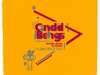AndileAndy, MKJay SA, A Little Bit Of Fun Original Mix, mp3, download, datafilehost, toxicwap, fakaza