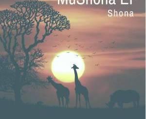 Shona SA – African Heritage (Original Mix)