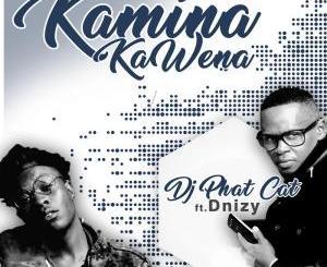 DJ Phat Cat – Kamina Kawena (feat. Dnizy)