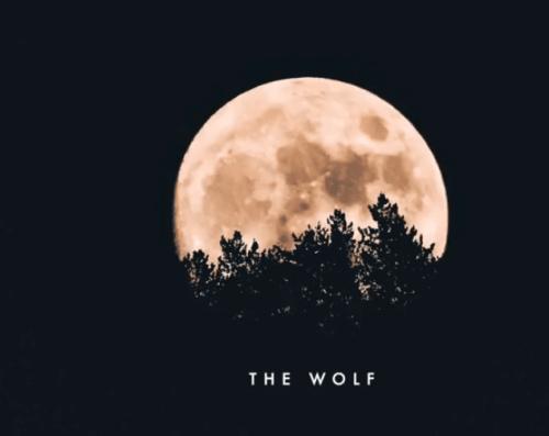 THEMBA (SA) – The Wolf (Original Mix)