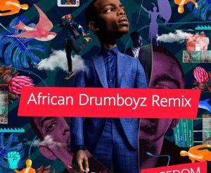 Zakes Bantwini, Moonga K – Freedom (African DrumBoyz Remix)